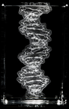 DNA Rendered by Bathsheba Grossman